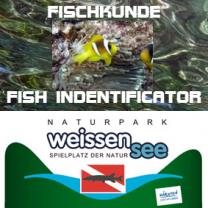 PADI SPEZIALKURS FISH INDENTIFICATOR